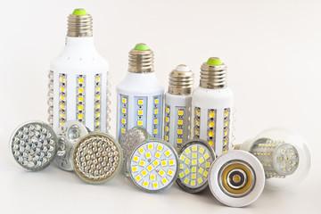 various types of bulbs