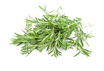 rosemary on a white background .