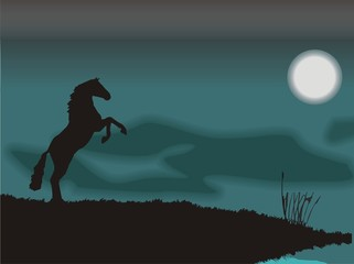 horse silhouette in a blue moon