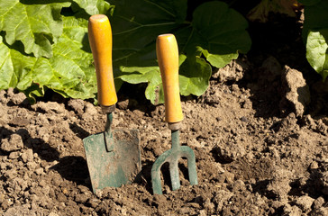 Fork and Trowel