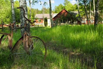Symbolic Swedish cottage landscape