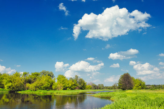 Landscape with flood waters of Narew river. Beautiful wallpaper.