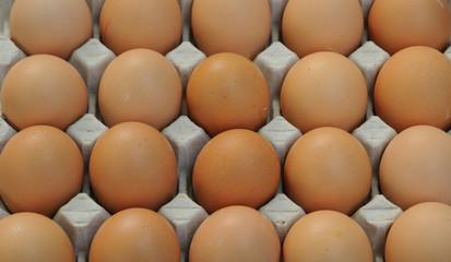 étal d'œufs au marché