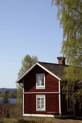 Typical Swedish red cottage with birch tree