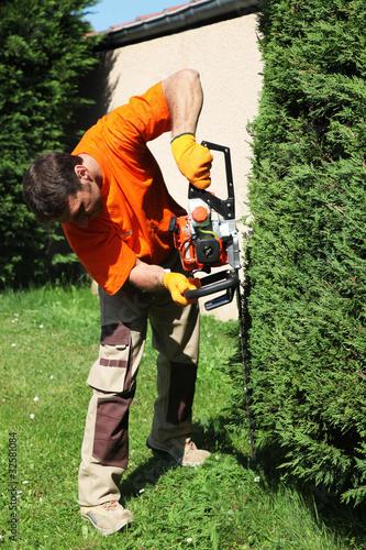 Jardinier p pini riste paysagiste taille un cypr s vert for Paysagiste tarif