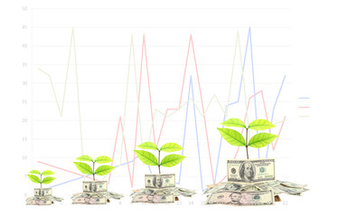 dollar money and busines with graphs.