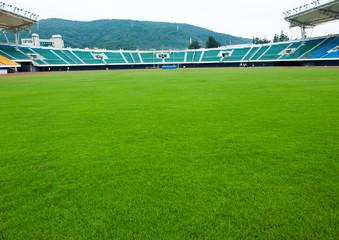 football sports field