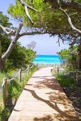Wall Mural - beach way to Illetas paradise beach Formentera