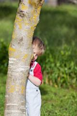kleiner junge versteckt sich hinter baumstamm
