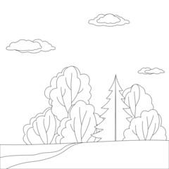 Landscape, forest, contours