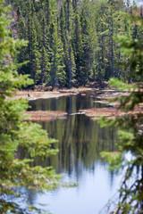 Seeufer - Kanada - Algonquin - Canada - Seaside