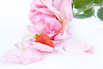 Rose & Strawberry