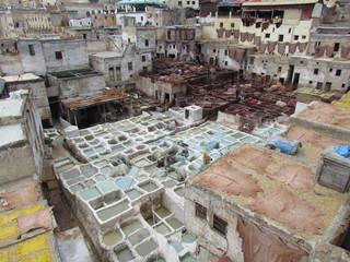 Tanneries historique de Fes (Maroc)
