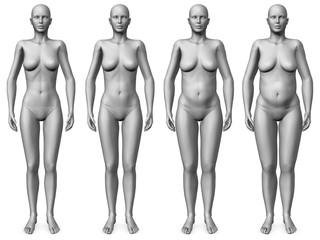female morph - skinny to fat