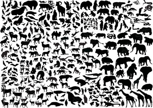 enormous animals silhouettes collection