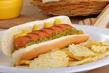 Hot Dog on a Bun