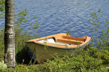 Rowing boat moored to a birch tree