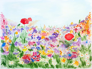 Summer flowers in the garden watercolor hand-painted