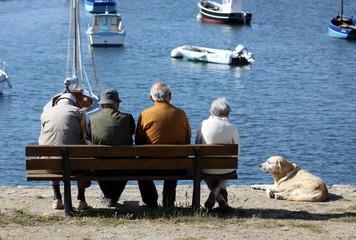 senior,banc,retraite,repos,amis,assis,bretagne