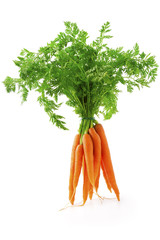Fototapeta fresh carrot fruits with green leaves obraz