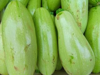 White zucchini, calabacín blanco.