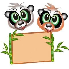 panda in coppia