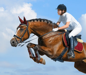 Equestrian jumper - horsewoman and bay mare