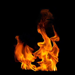 Flames on Black Photographic Background