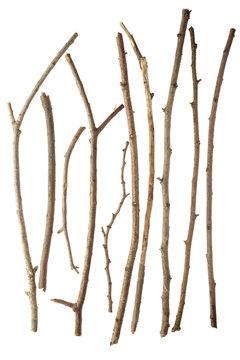 Sticks isolated