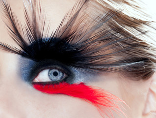 black bird woman eye makeup macro