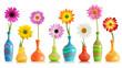 Daisy flowers in vases