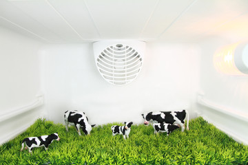 Freshness concept. A field with cows inside the fridge
