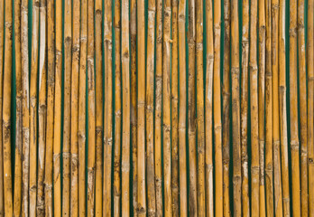 bamboo wall decorate