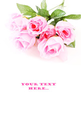 Pink Roses with Space for Text