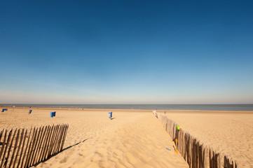 Beach with poles