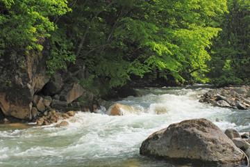 新緑と松川渓谷