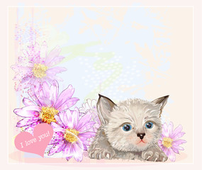 greeting card with  little fluffy kitten and gerberas