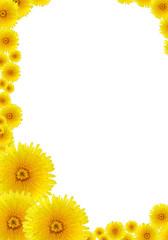 Yellow Dandelions Frame