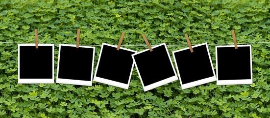 Fotofrafie appese sul prato verde