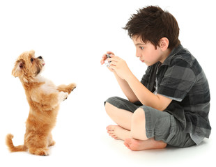 Boy Shooting Photos of His Dog with Digital Camera
