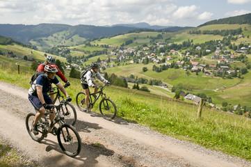 Fototapete - Im Schwarzwald unterwegs mit dem MTB