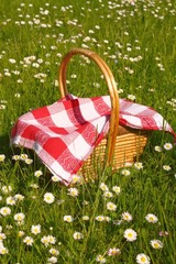 Deurstickers Picknick picnic basket