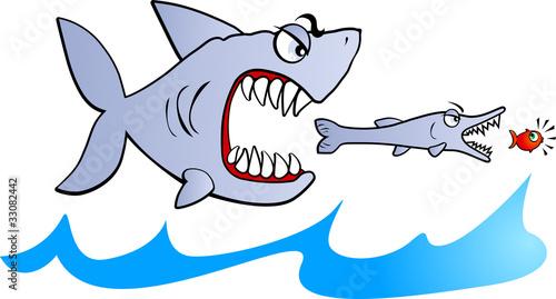 Pesce grosso mangia pesce piccolo immagini e vettoriali for Scarica clipart
