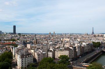 View of Paris from Notre Dame. Eiffel tower. France