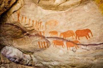 Cederberg Cave Painting