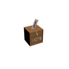 box voting egypt
