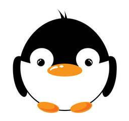 Funny cartoon penguin on the white background