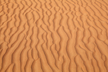 Pattern on a sand dune in a desert near Dubai