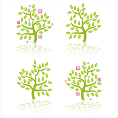set of 4 trees with flowers