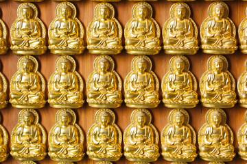 Golgen Buddha background